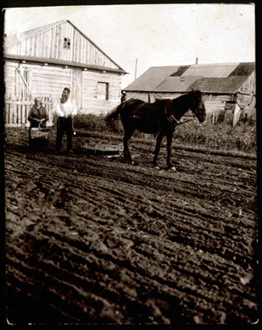 Reb Dovid Moszczenik ir jo žmona Leah aria daržą savo namo galiniame kieme. 1941 m.